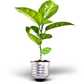 Casa Eficiente Energéticamente Hogar Saludable